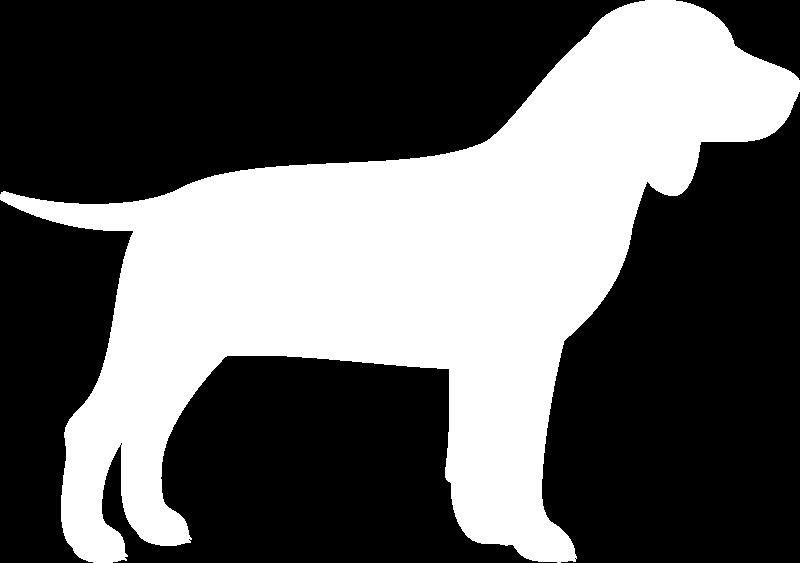 cibo per cani, cibo biologico per cani, Linea Cane