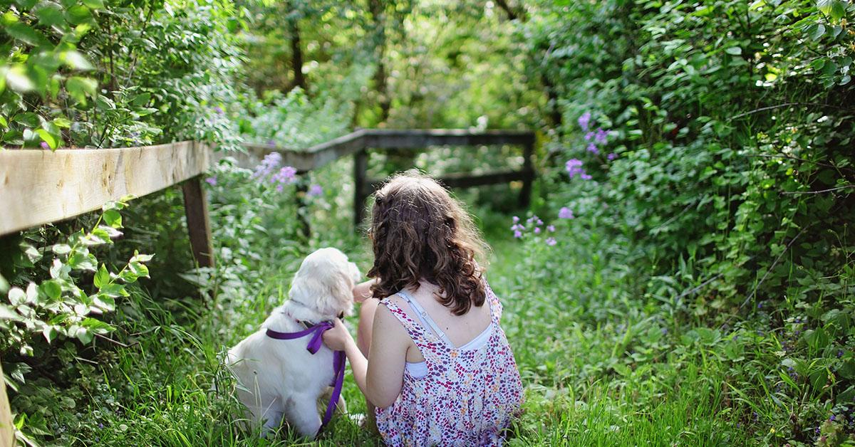 Quali sono i cani più adatti alla Pet Therapy