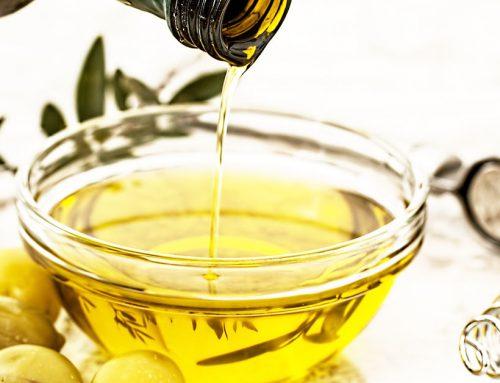 La Ricetta della Vita: l'olio d'oliva fa bene al nostro cane
